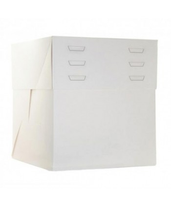 Caja 25x25x30 altura regulable